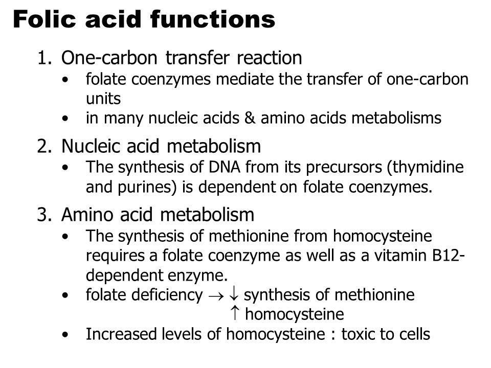 Folic acid functions One-carbon transfer reaction