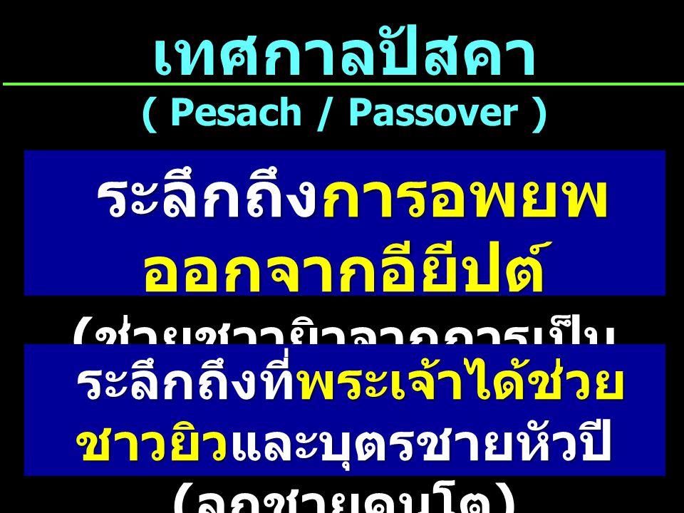 เทศกาลปัสคา ( Pesach / Passover )