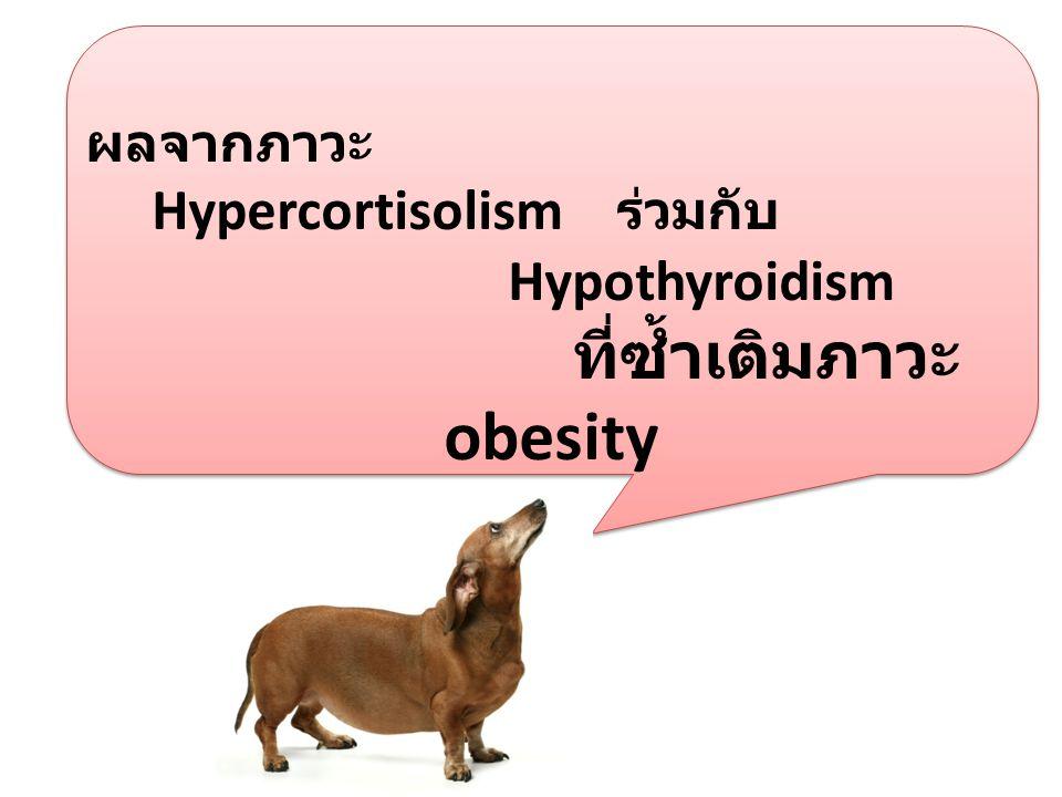 ที่ซ้ำเติมภาวะ obesity