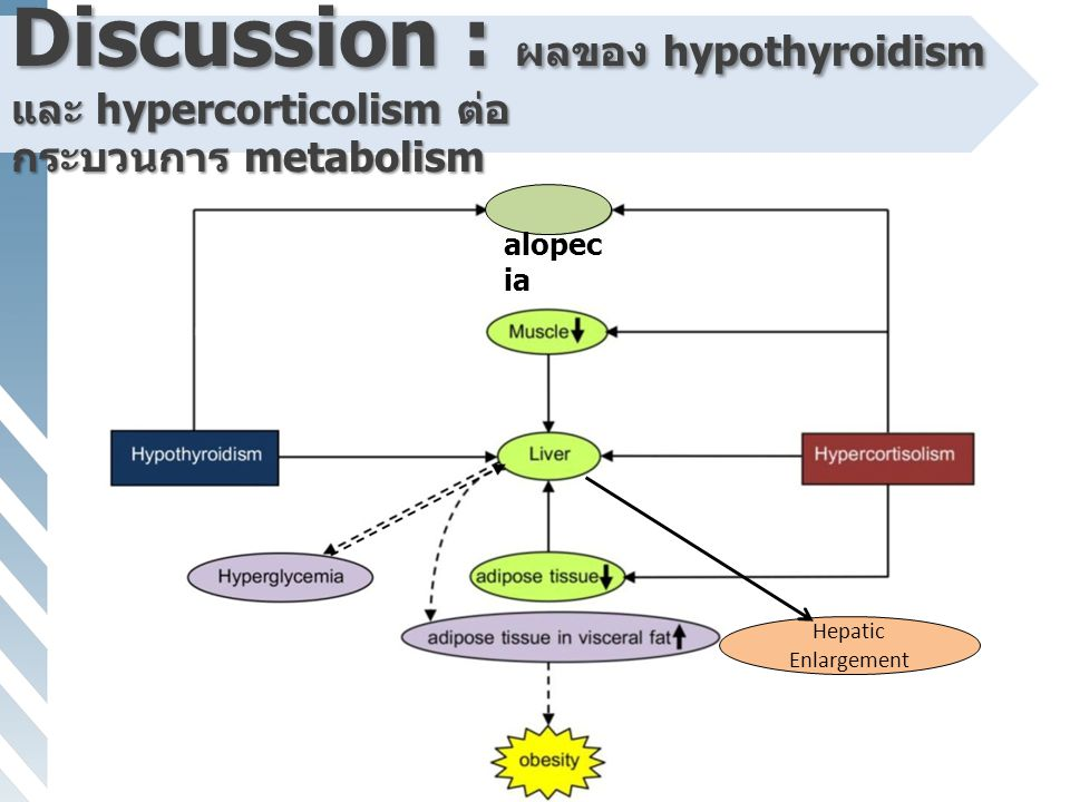 Discussion : ผลของ hypothyroidism และ hypercorticolism ต่อ