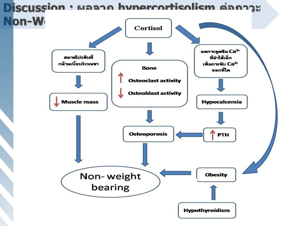 Discussion : ผลจาก hypercortisolism ต่อภาวะ Non-Weight Bearing