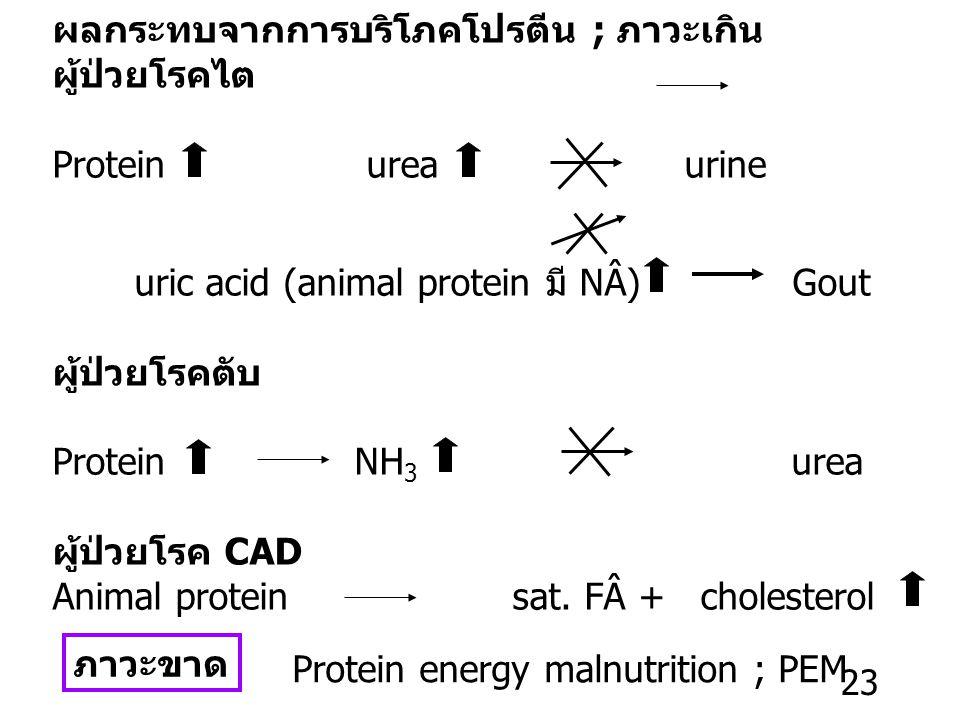 ผลกระทบจากการบริโภคโปรตีน ; ภาวะเกิน
