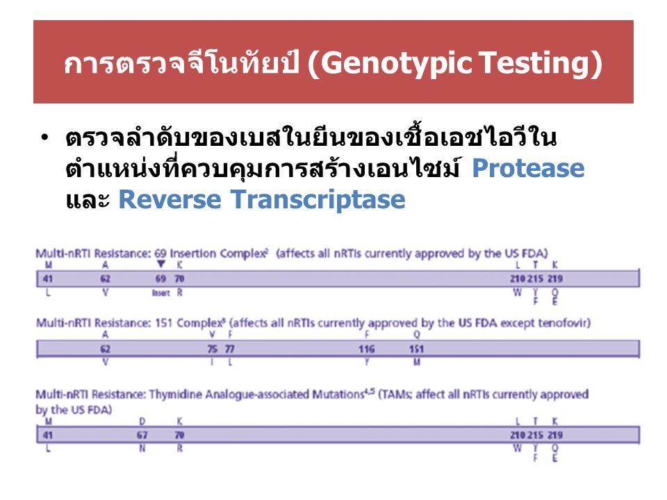 การตรวจจีโนทัยป์ (Genotypic Testing)