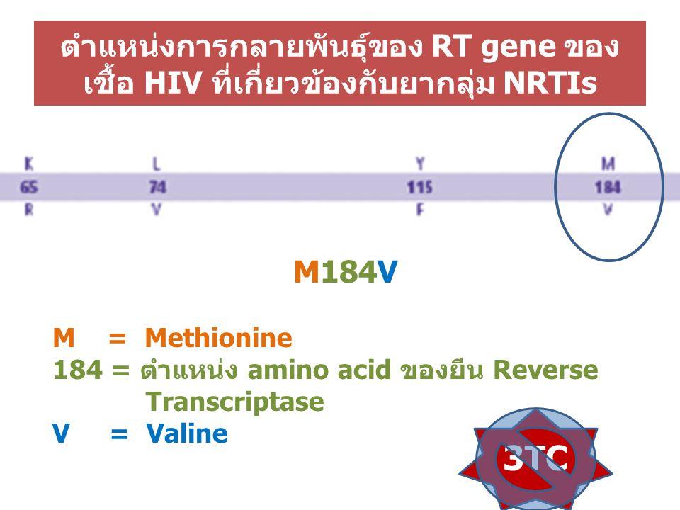ตำแหน่งการกลายพันธุ์ของ RT gene ของเชื้อ HIV ที่เกี่ยวข้องกับยากลุ่ม NRTIs