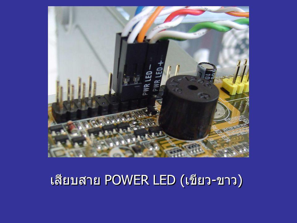 เสียบสาย POWER LED (เขียว-ขาว)