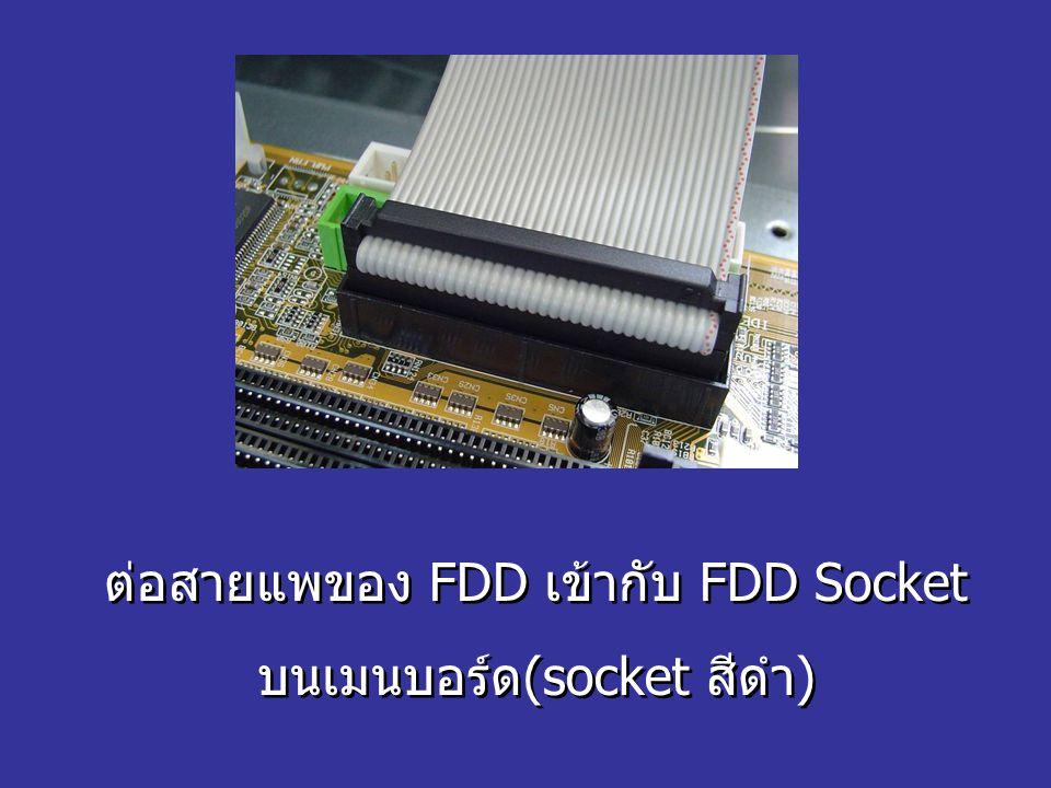 ต่อสายแพของ FDD เข้ากับ FDD Socket บนเมนบอร์ด(socket สีดำ)