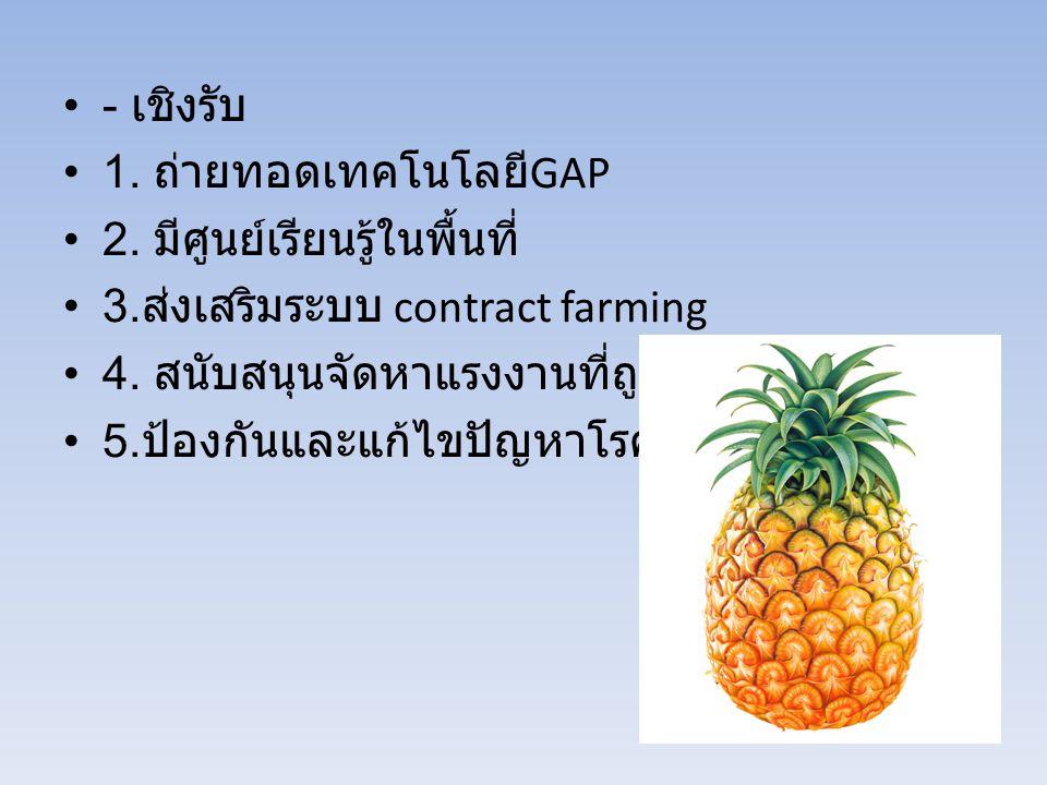 - เชิงรับ 1. ถ่ายทอดเทคโนโลยีGAP. 2. มีศูนย์เรียนรู้ในพื้นที่ 3.ส่งเสริมระบบ contract farming. 4. สนับสนุนจัดหาแรงงานที่ถูกต้อง.