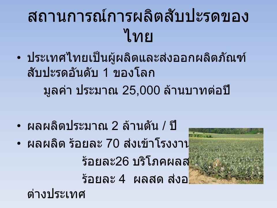 สถานการณ์การผลิตสับปะรดของไทย