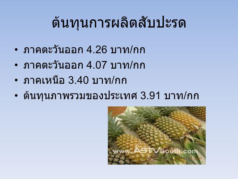 ต้นทุนการผลิตสับปะรด