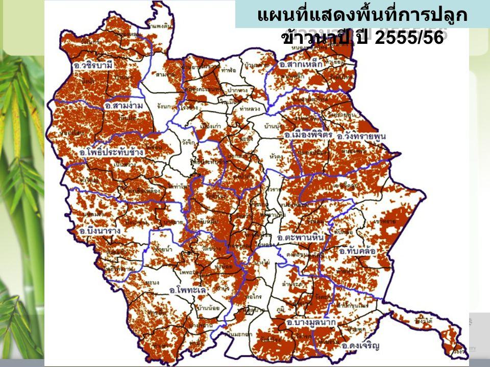 แผนที่แสดงพื้นที่การปลูกข้าวนาปี ปี 2555/56