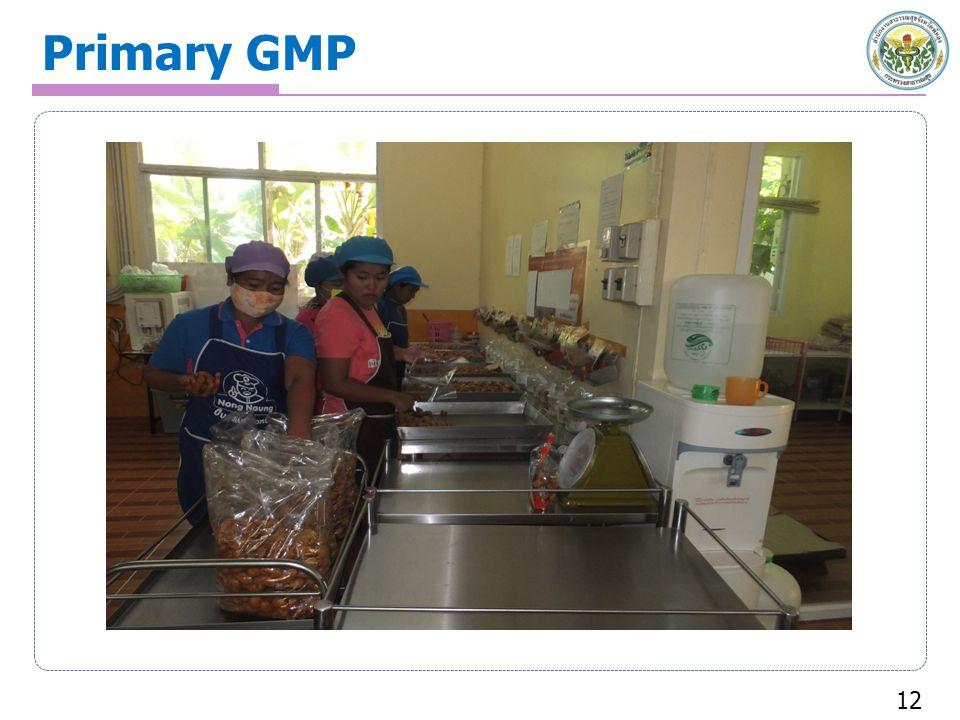 Primary GMP