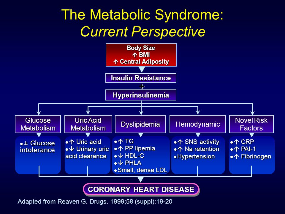 The Metabolic Syndrome: Current Perspective