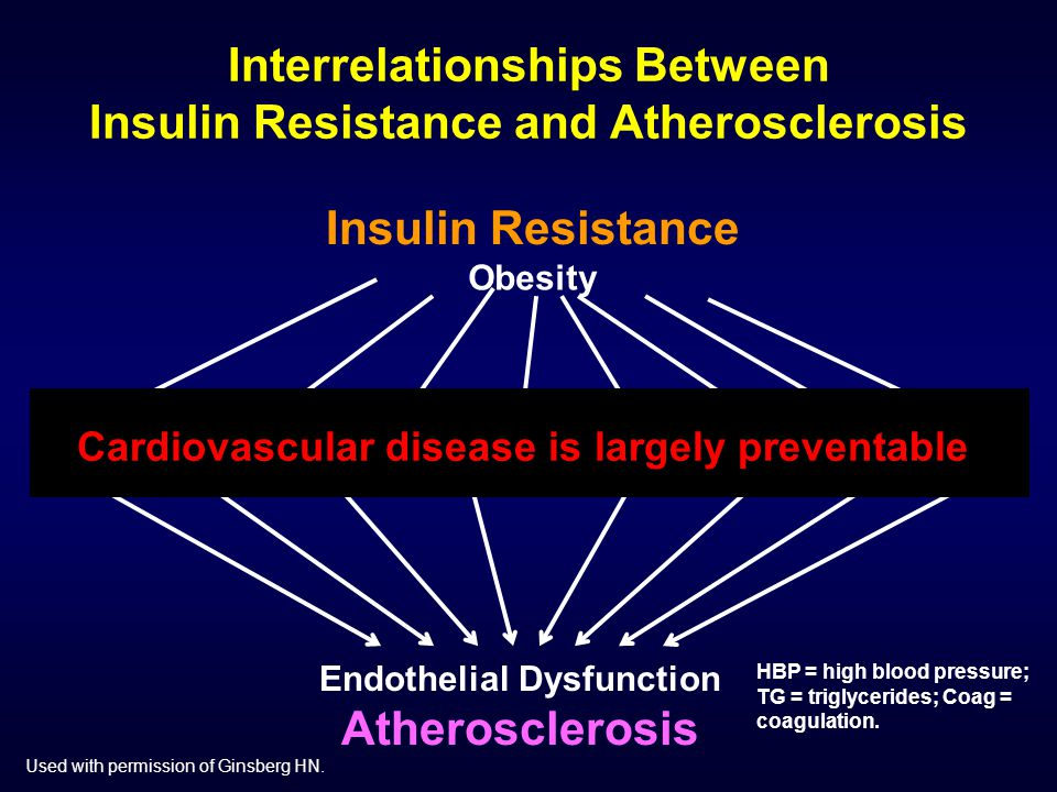 Interrelationships Between Insulin Resistance and Atherosclerosis