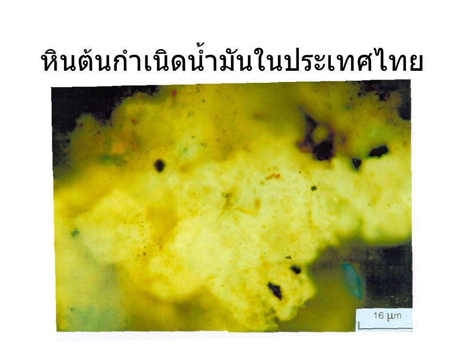 หินต้นกำเนิดน้ำมันในประเทศไทย