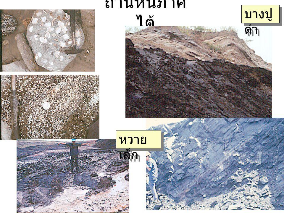 ถ่านหินภาคไต้ บางปูดำ หวายเล็ก
