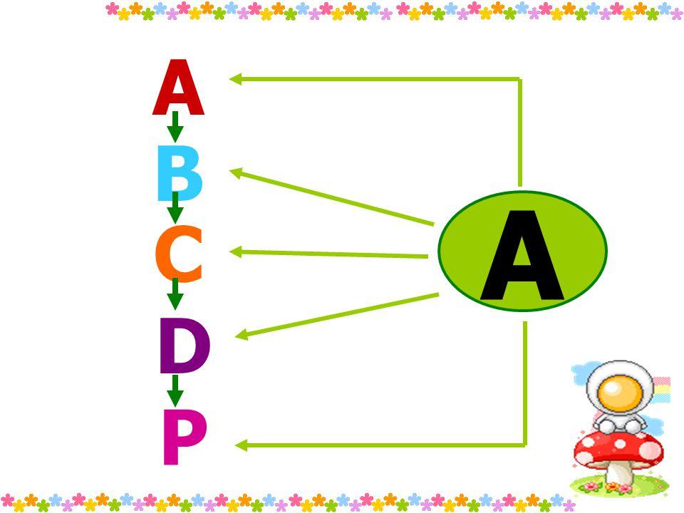 A A B C D P