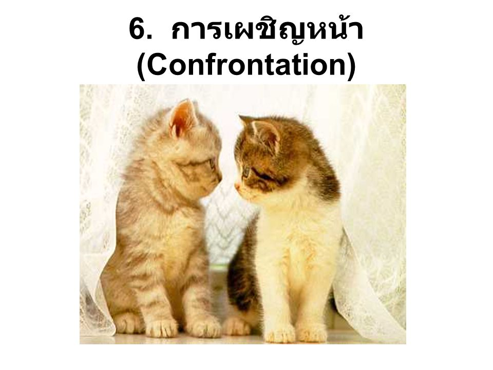 6. การเผชิญหน้า (Confrontation)