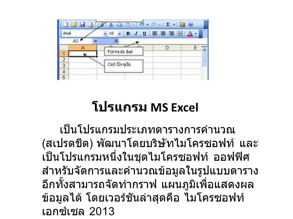 โปรแกรม MS Excel
