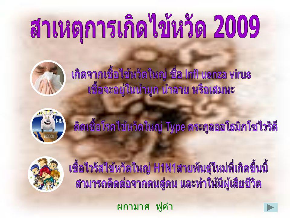 สาเหตุการเกิดไข้หวัด 2009