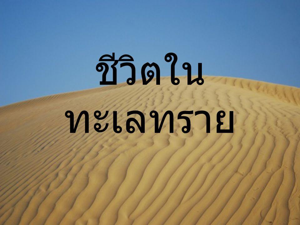 ชีวิตในทะเลทราย