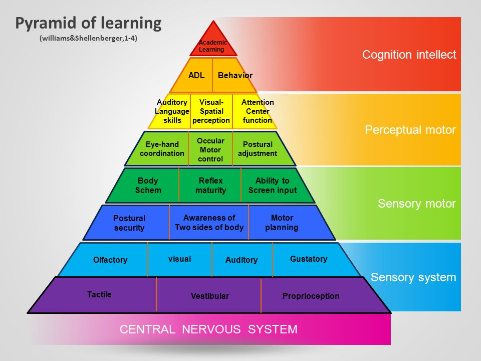 Pyramid of learning (williams&Shellenberger,1-4)