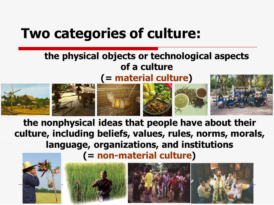 Two categories of culture:
