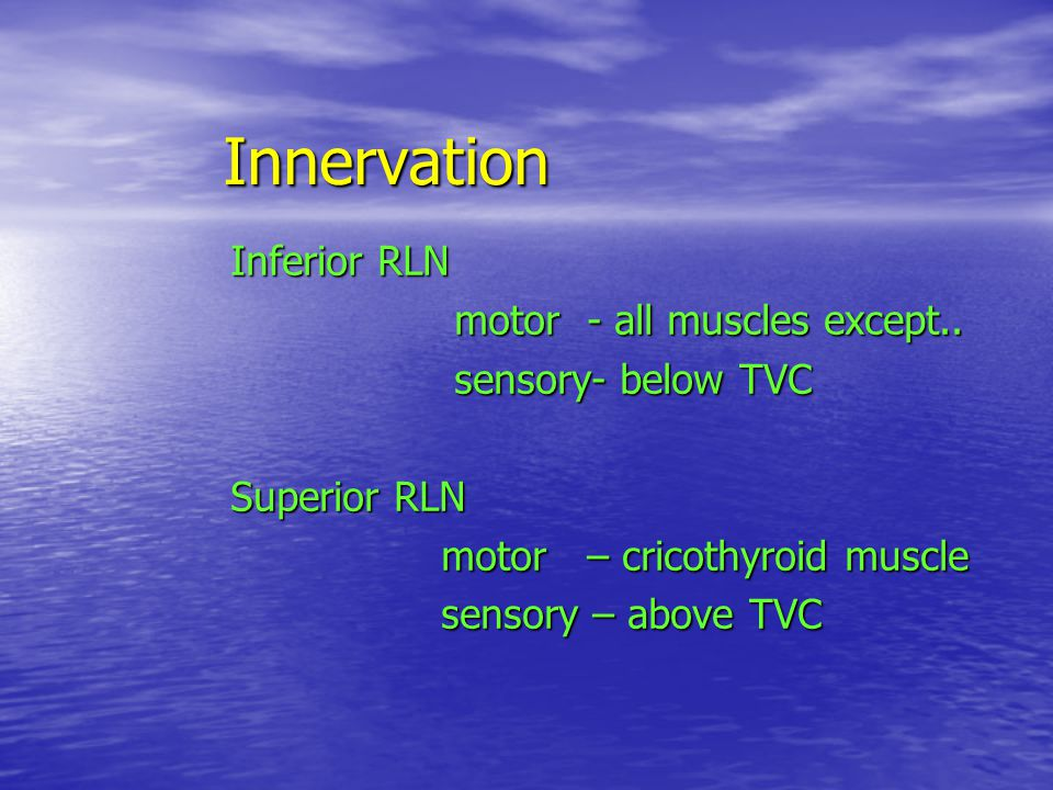 Innervation Inferior RLN motor - all muscles except..