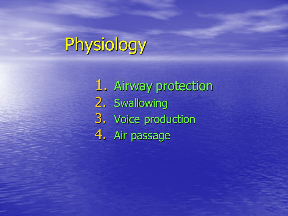 Airway protection Swallowing Voice production Air passage
