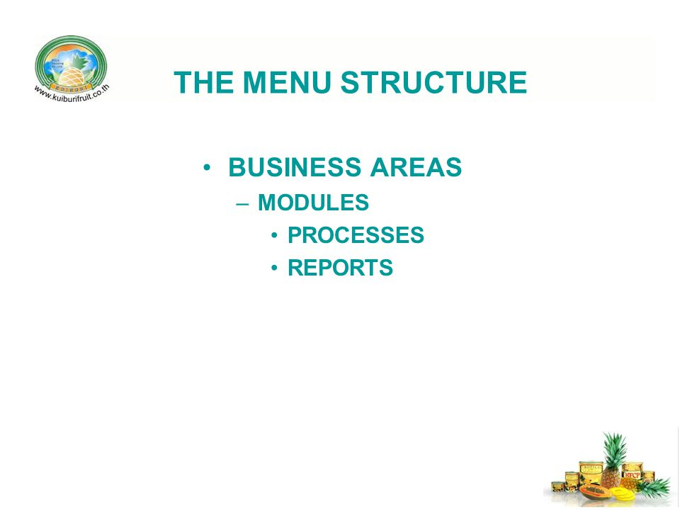 THE MENU STRUCTURE BUSINESS AREAS MODULES PROCESSES REPORTS