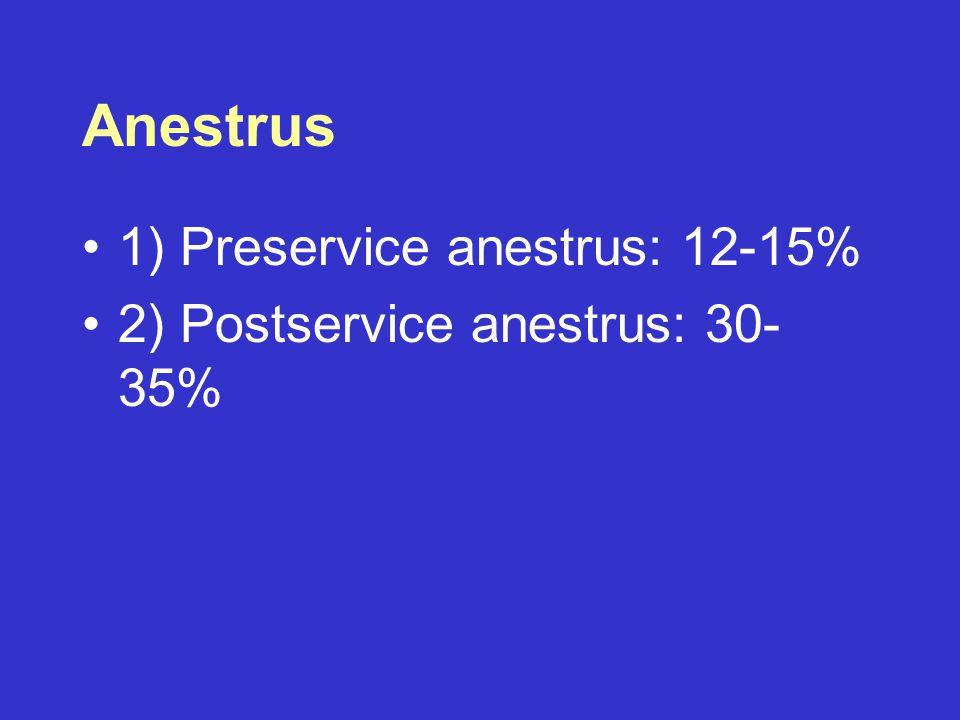 Anestrus 1) Preservice anestrus: 12-15%