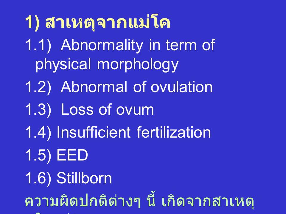 1) สาเหตุจากแม่โค 1.1) Abnormality in term of physical morphology