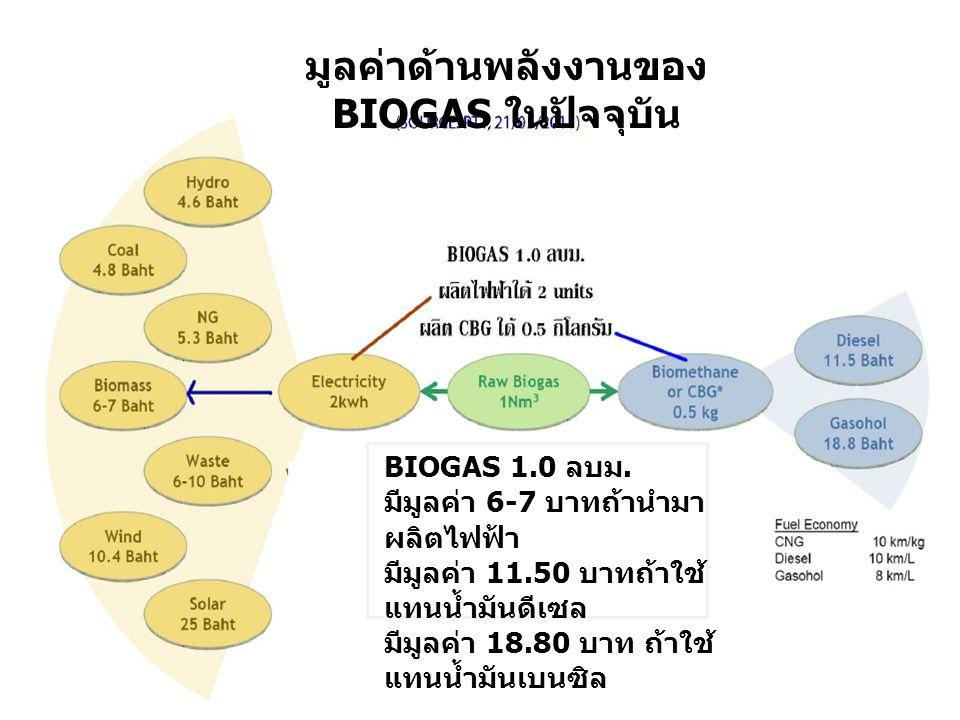 มูลค่าด้านพลังงานของ BIOGAS ในปัจจุบัน