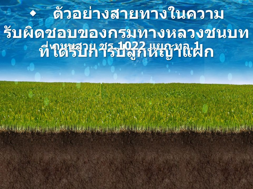  ตัวอย่างสายทางในความรับผิดชอบของกรมทางหลวงชนบทที่ได้รับการปลูกหญ้าแฝก