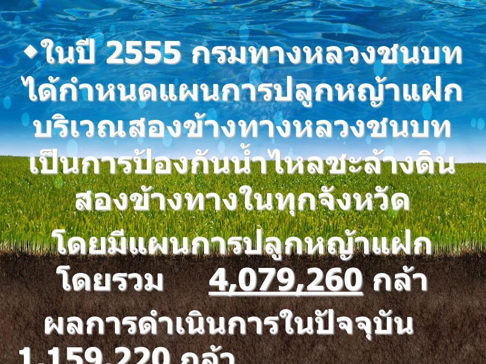 โดยมีแผนการปลูกหญ้าแฝกโดยรวม 4,079,260 กล้า