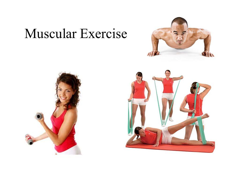 Muscular Exercise