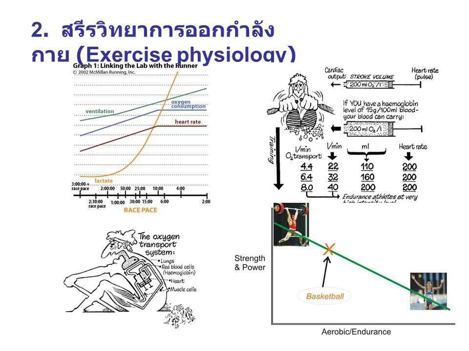 2. สรีรวิทยาการออกกำลังกาย (Exercise physiology)