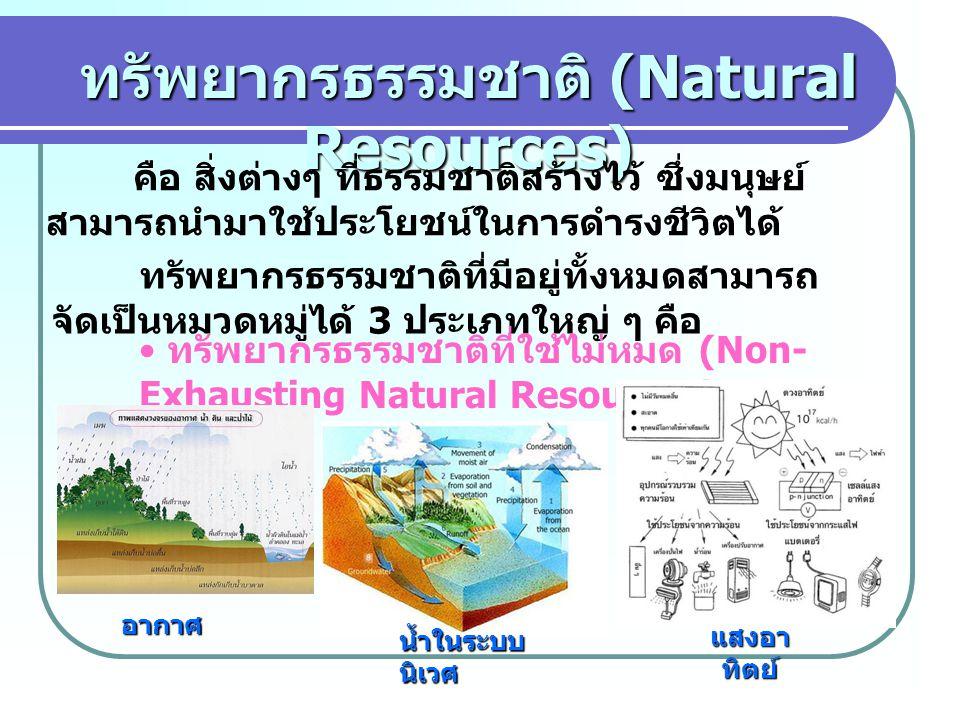 ทรัพยากรธรรมชาติ (Natural Resources)