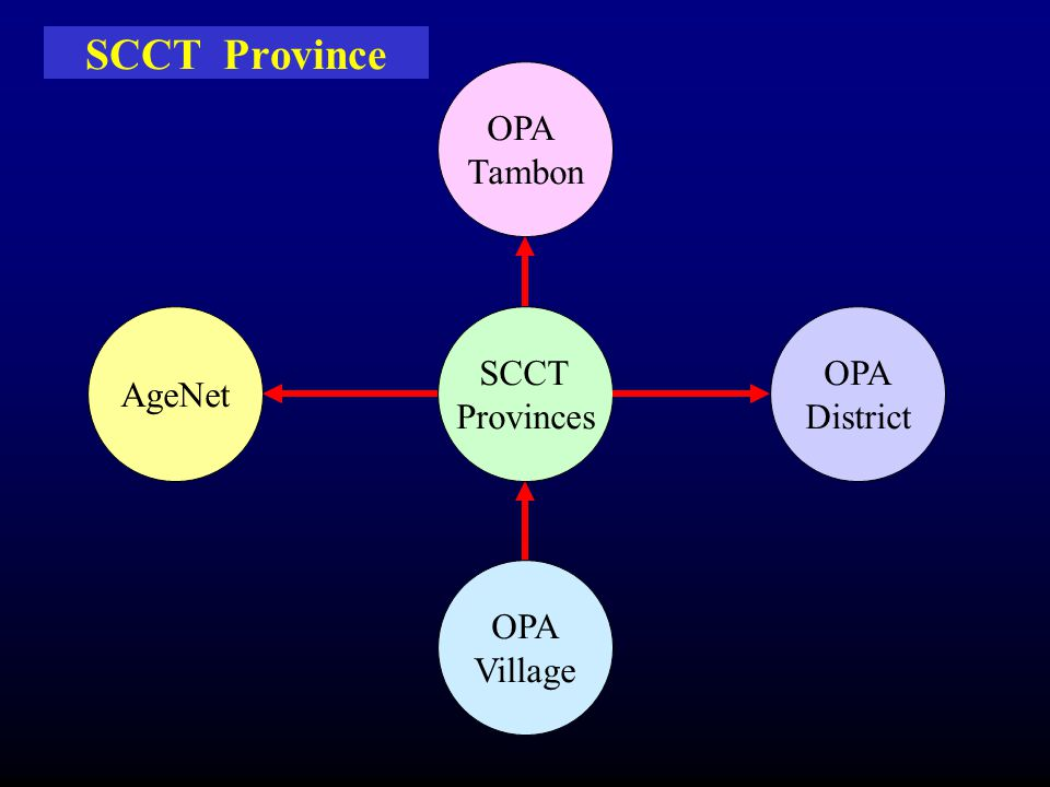 SCCT Province OPA Tambon AgeNet SCCT Provinces OPA District OPA