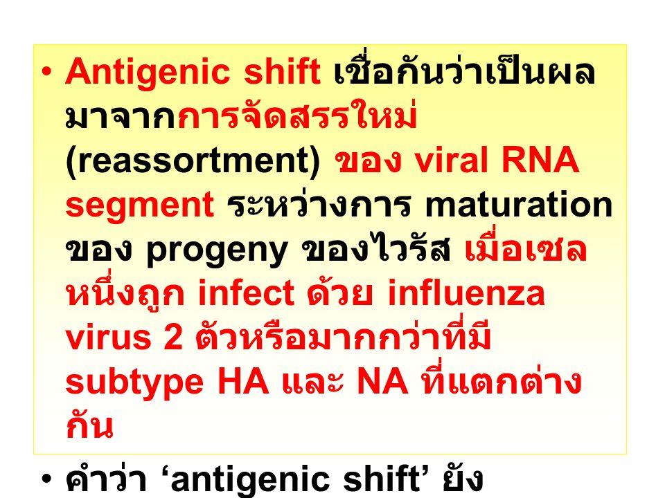 Antigenic shift เชื่อกันว่าเป็นผลมาจากการจัดสรรใหม่ (reassortment) ของ viral RNA segment ระหว่างการ maturation ของ progeny ของไวรัส เมื่อเซลหนึ่งถูก infect ด้วย influenza virus 2 ตัวหรือมากกว่าที่มี subtype HA และ NA ที่แตกต่างกัน