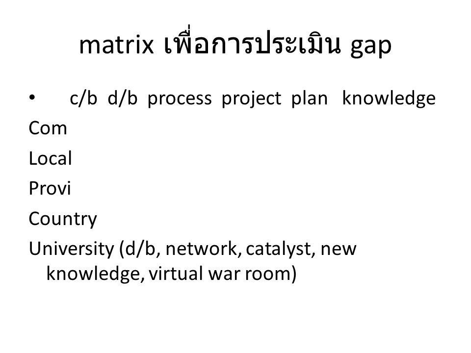 matrix เพื่อการประเมิน gap