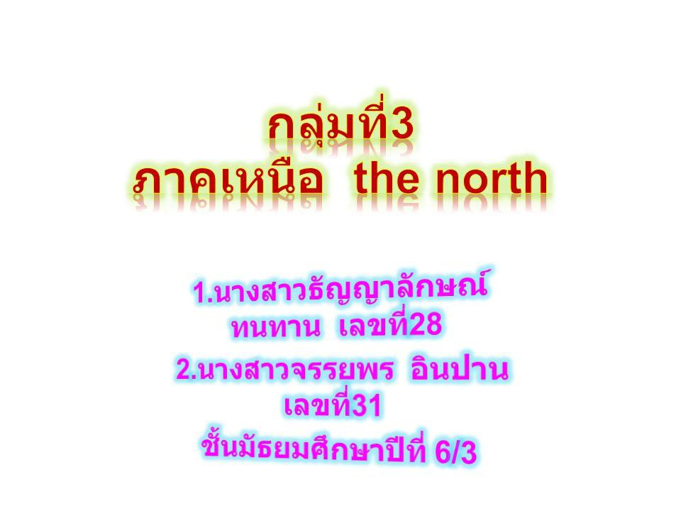 กลุ่มที่3 ภาคเหนือ the north
