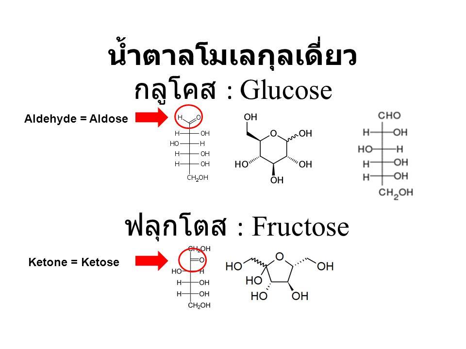 น้ำตาลโมเลกุลเดี่ยว กลูโคส : Glucose ฟลุกโตส : Fructose