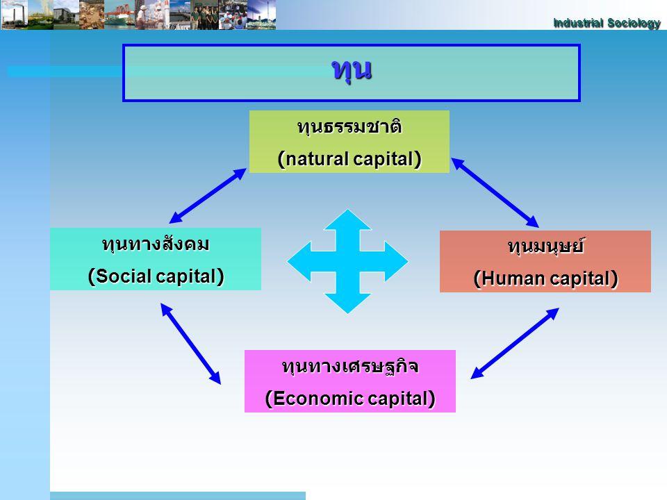 ทุน ทุนธรรมชาติ (natural capital) ทุนทางสังคม ทุนมนุษย์