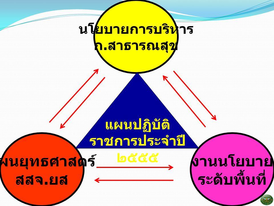 แผนปฏิบัติราชการประจำปี ๒๕๕๕