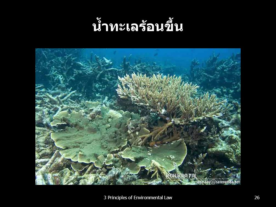 3 Principles of Environmental Law
