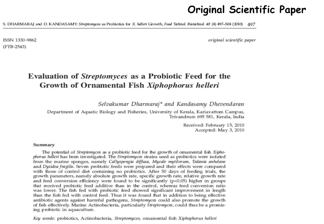 Original Scientific Paper