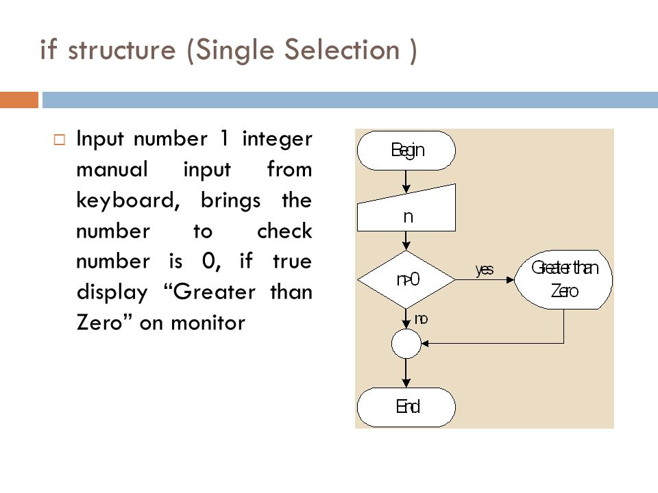 if structure (Single Selection )