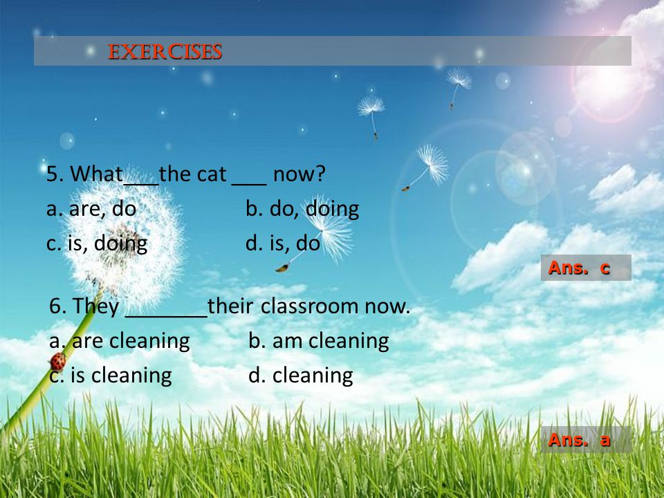 Exercises 5. What___the cat ___ now a. are, do b. do, doing c. is, doing d. is, do Ans. c.