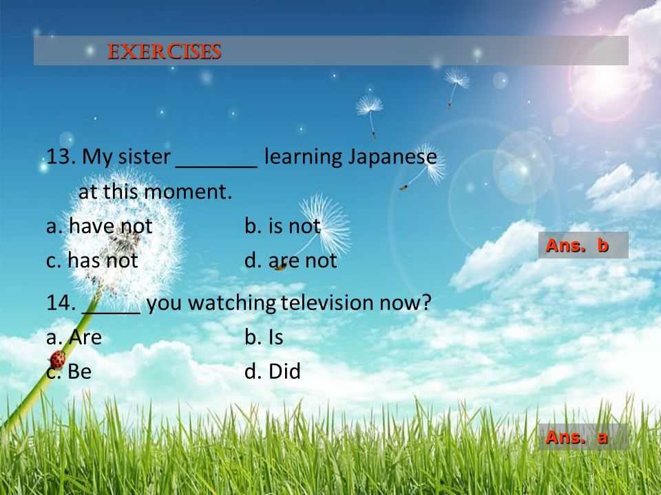 14. _____ you watching television now a. Are b. Is c. Be d. Did