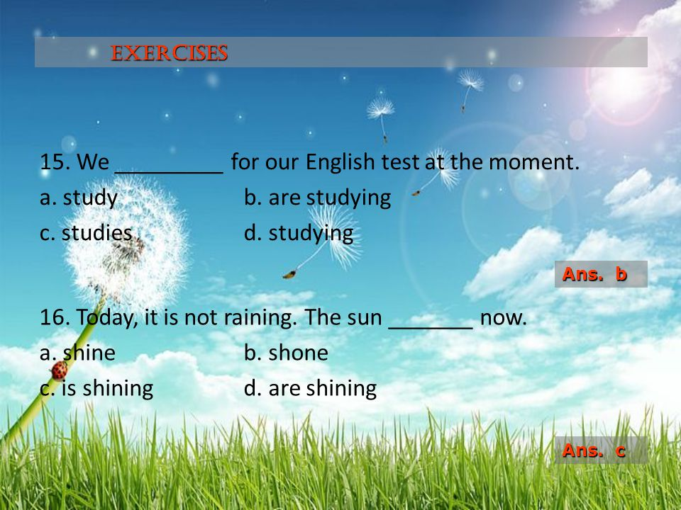Exercises 15. We _________ for our English test at the moment. a. study b. are studying c. studies d. studying